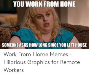 Rebel Wilson work from home meme