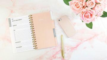 rose gold planner