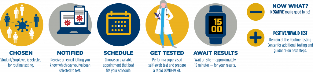 Graphic showing the routine testing process