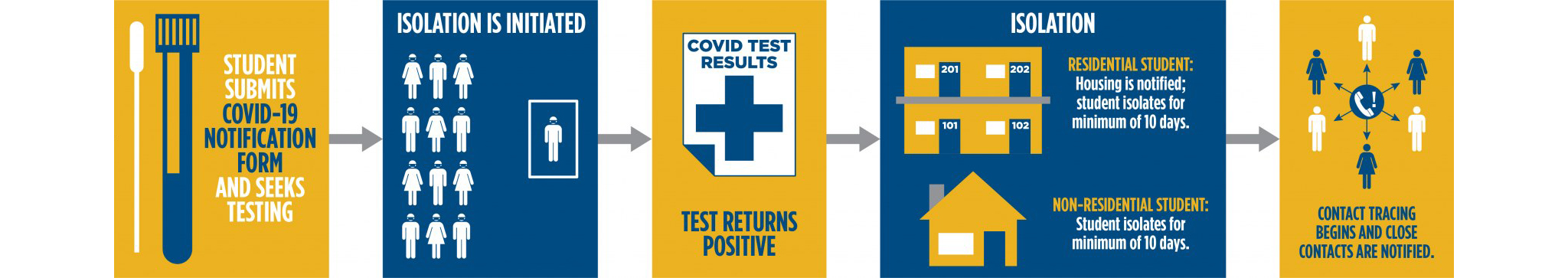 infographic breaks down steps of what happens when a case or suspected case of COVID-19 is reported on campus