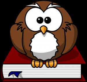 owl-47526