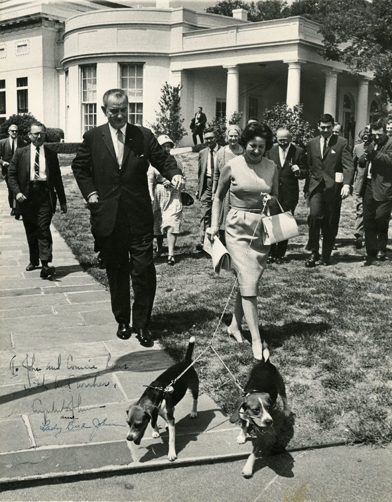 Photograph of President Lyndon B. Johnson and Lady Bird Johnson walking presidential beagles, Him and Her, on the White House lawn.