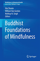 buddhist foundations of mindfulness book cover