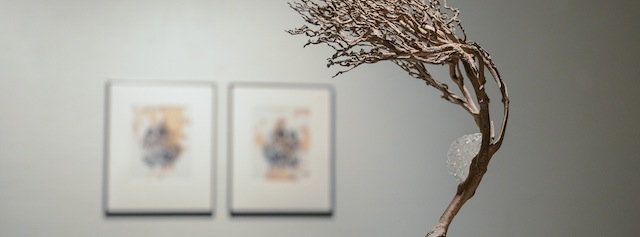 faculty-art-cress-gallery-2013-16