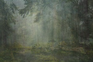 "Amy Elkins' painting, ""Nine Years Out of a Death Row Sentence: Forest"""