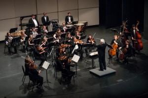 orchestra-2014-01