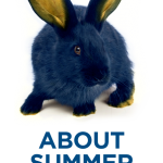 Rabbit with About Summer School