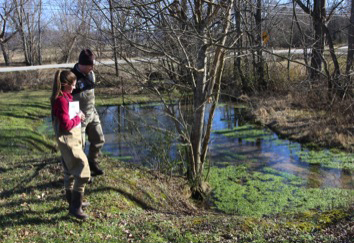 Student inspect small creek.