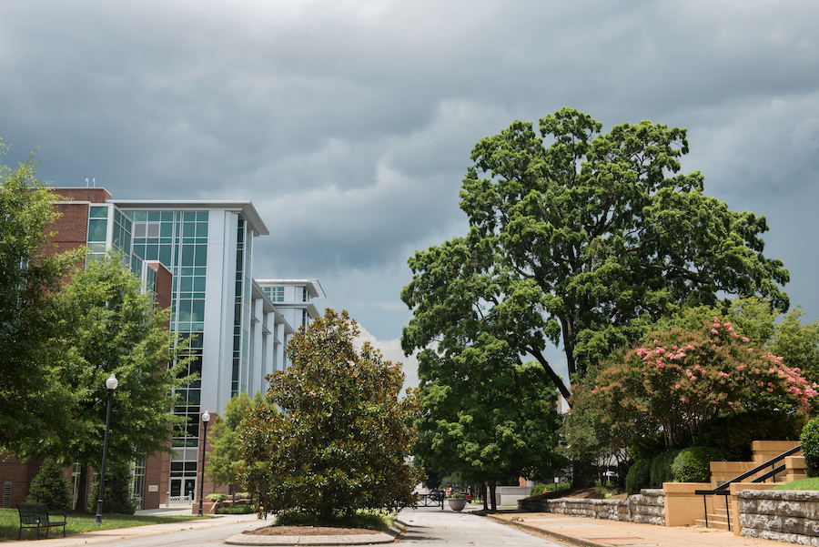 Vine St at UTC with trees, Library and stormy clouds in the background