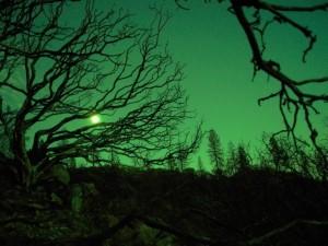 halloween_landscape_by_justbrendan