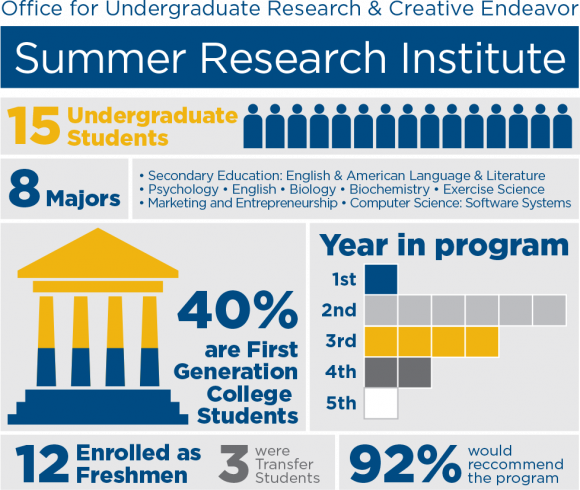 Summer Research Institute Infographic